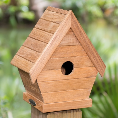 teak houses for birds