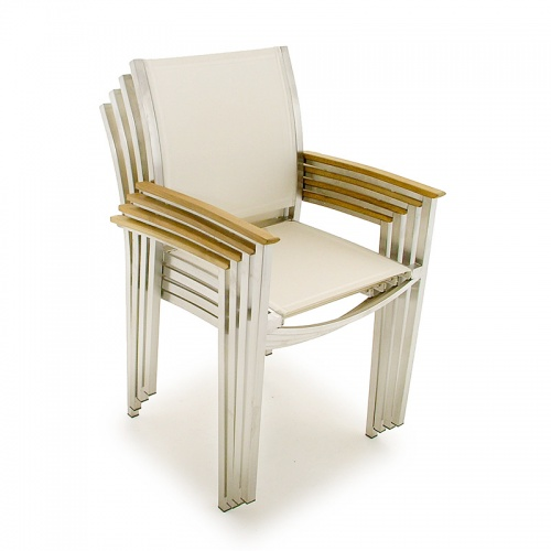 Teak Stainless  Arm Chairs - Picture C