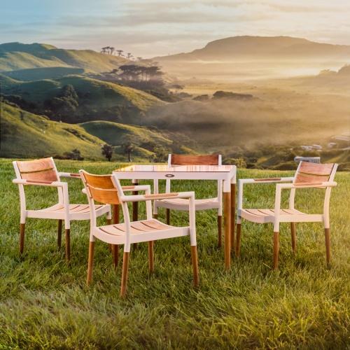Bloom Teak & Aluminum Dining Set - Picture A
