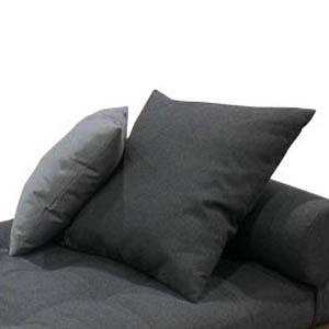 Throw Pillow (22 x22) - Picture A